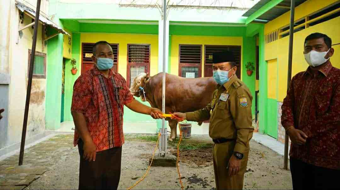 Al Haris saat serahkan bantuan hewan kurban