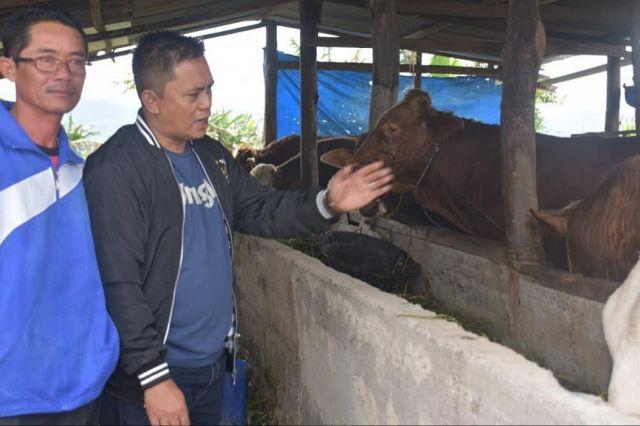 Support Pengembangan Bumdes, Sofyan Ali Kunjungi Bumdes Kayu Aro